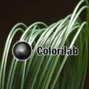 Filament d'imprimante 3D ABS 3.00 mm vert forêt 350C
