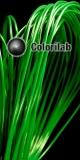 ABS 3D printer filament 1.75 mm dark green 347C