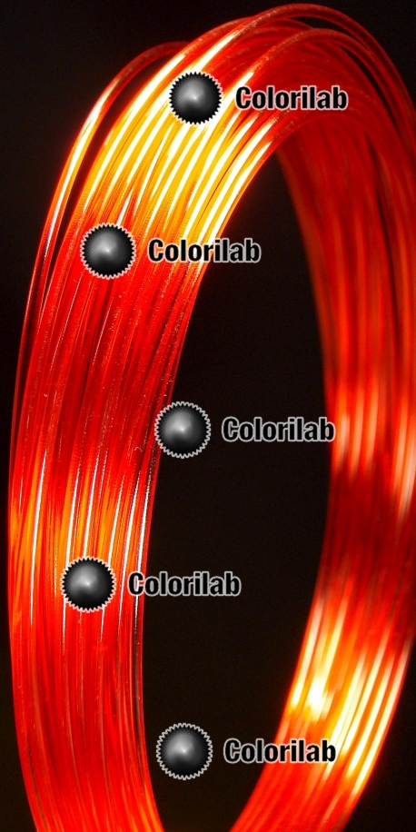 Filament d'imprimante 3D PC 1.75 mm rouge 485C