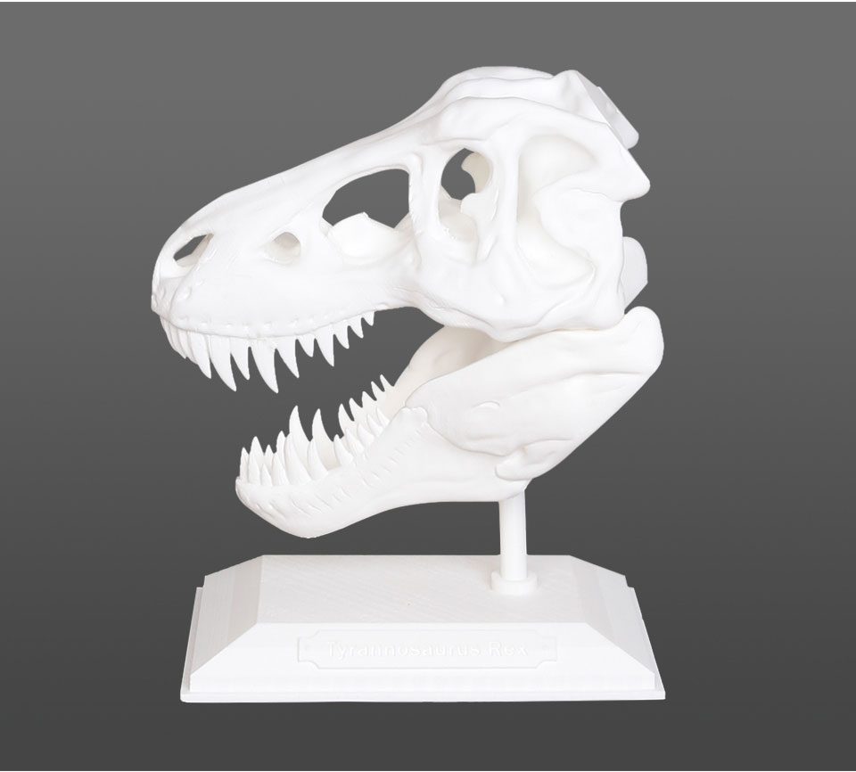 T-Rex 2+ sample prints